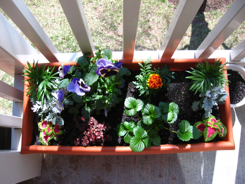 Charming 2 Top Balcony Garden